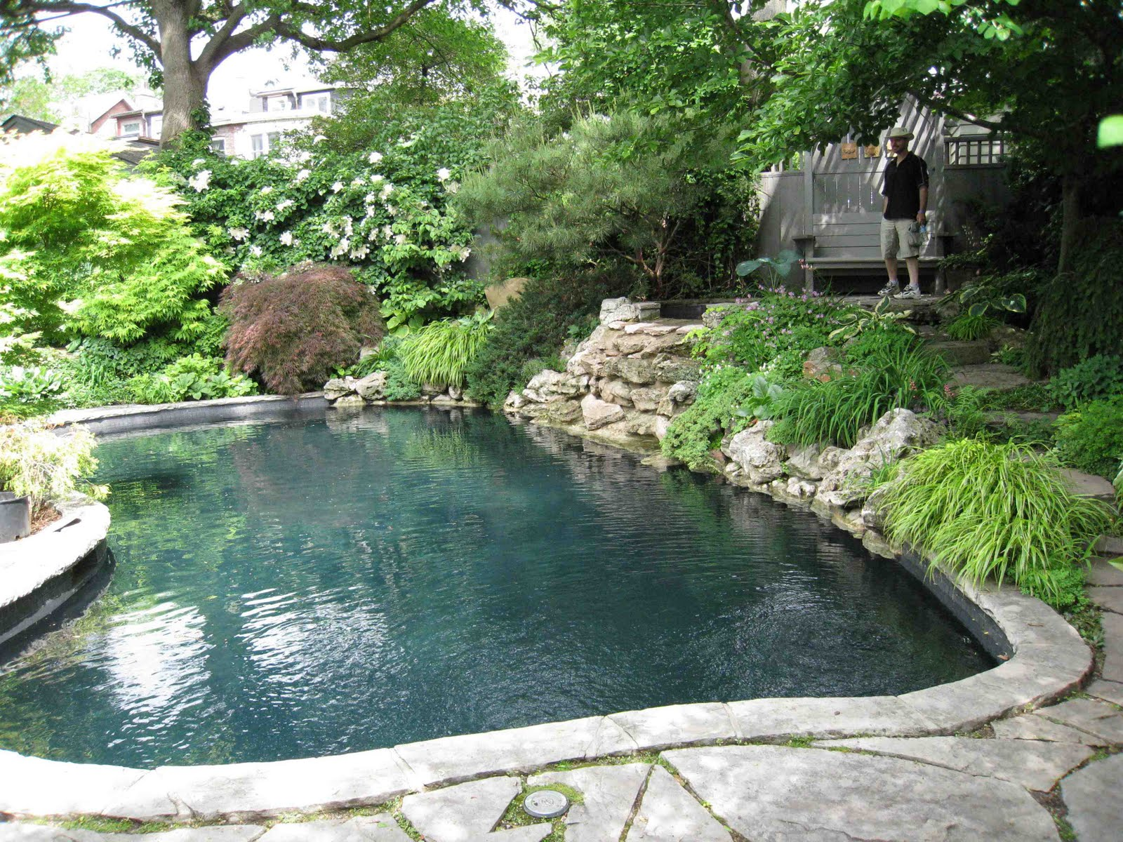 Awesome Lagoon Pool Designs Gallery - Decoration Design Ideas ...