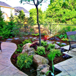 Drought Ready Landscaping